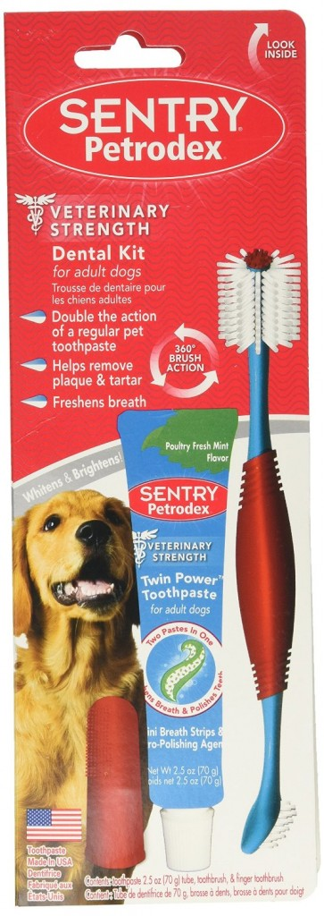 dog-toothbrush-toothpaste